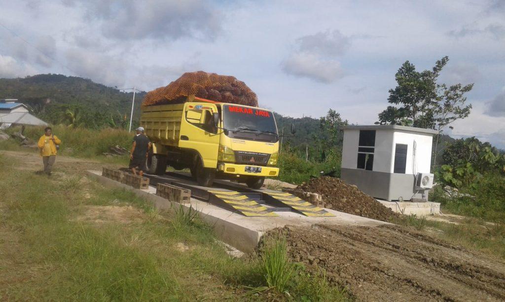 timbangan truck sawit 20 ton
